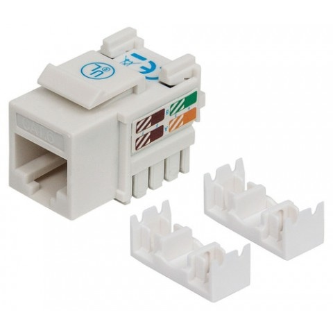 JACK DE IMPACTO UTP CAT6 CALIBE 22 AL 26 AWG INTELLINET BLANCO 210591